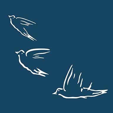 sticker oiseaux libres