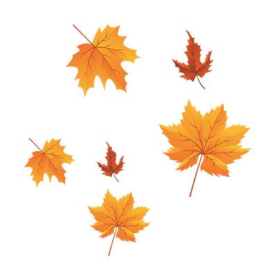 sticker feuilles d&#39automnes orange