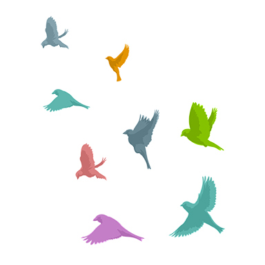 sticker envol d'oiseaux