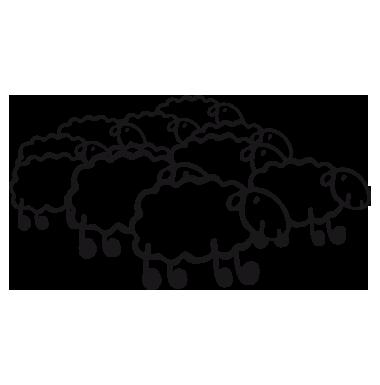 compter-les-moutons dans Politique