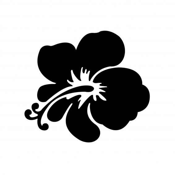 Fleur Hawaïenne Sur Fond Tribal