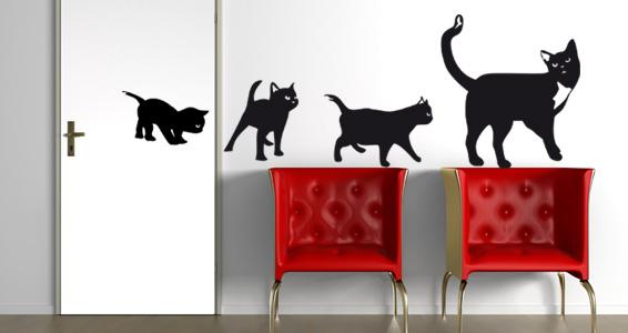 Famille de chats pour 35€