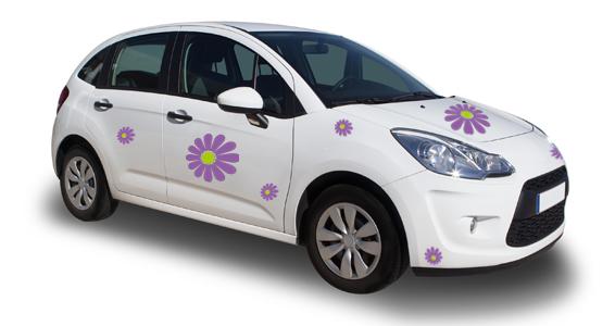 sticker fleur auto 2