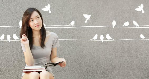 sticker Frise fils d'oiseaux
