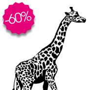 sticker Jolie girafe