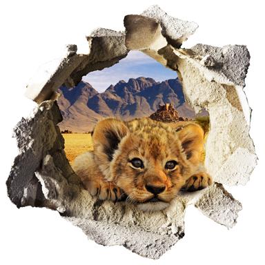 sticker Trompe l'oeil lionceau