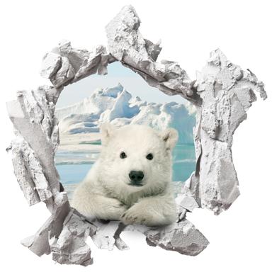 sticker Trompe l'oeil ourson polaire